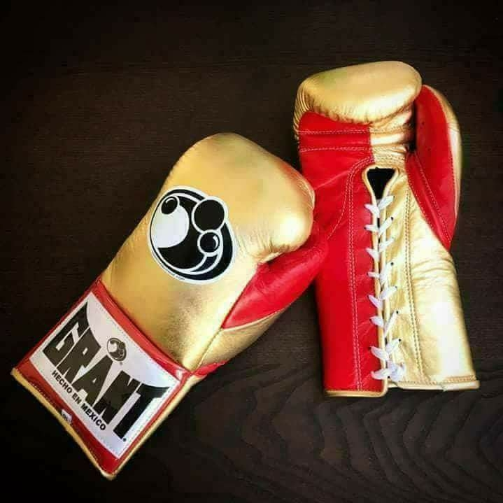 Customised Boxing GLoves For Pro Fighters