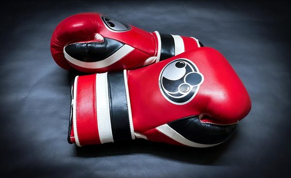 Grant Worldwide Training Boxing Gloves Hook and Loop